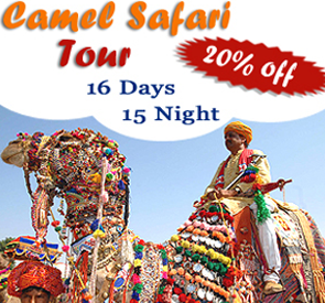 Camel Safari Tour, Rajasthan